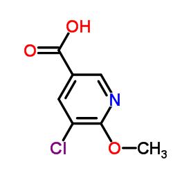5- 클로로 -6- 메 톡시 니코틴산