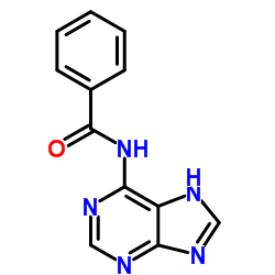 N-(5H-Purin-6-yl)benzamide CAS:4005-49-6