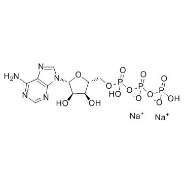 Adenosine 5'-triphosphate disodium salt CAS:987-65-5