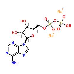 Adenosine-5'-diphosphate disodium salt CAS:16178-48-6