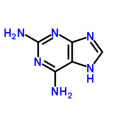 2,6-Diaminopurine CAS:1904-98-9