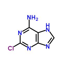 2-Chloroadenine CAS:1839-18-5