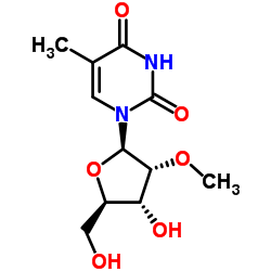 2'-O-methyl-5-methyluridine CAS:55486-09-4