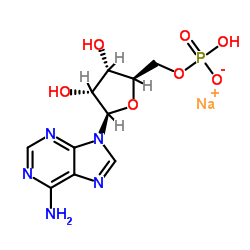 ADENOSINE5'-MONOPHOSPHATESODIUMSALT CAS:13474-03-8