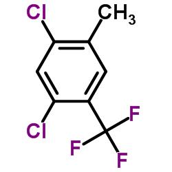 1,5-dichloro-2-methyl-4-(trifluoromethyl)benzene CAS:115571-61-4