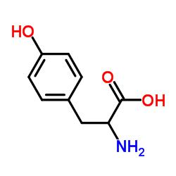DL-Tyrosine CAS:556-03-6