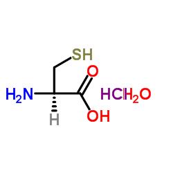 L-CYSTEINE HCL H2O CAS:7048-04-6
