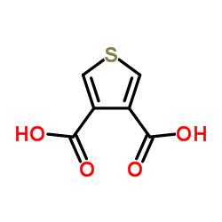 Thiophene-3,4-Dicarboxylic Acid CAS:4282-29-5