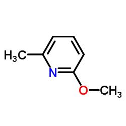 2- 메 톡시 -6- 메틸 피리딘