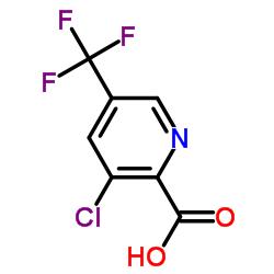 3- 클로로 -5- (트리 플루오로 메틸) 피 콜린 산