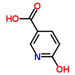 6- 하이드 록시 니코틴산