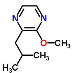 2-Methoxy-3-isobutyl pyrazine CAS:24683-00-9