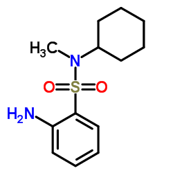 2-Amino-N-cyclohexyl-N-methylbenzenesulfonamide CAS:70693-59-3