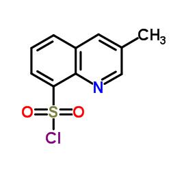 3-Methylquinoline-8-sulfonyl chloride CAS:74863-82-4