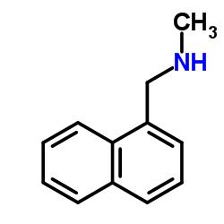 1-Methyl-aminomethyl naphthalene CAS:14489-75-9