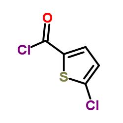 5-Chlorothiophene-2-carbonyl chloride CAS:42518-98-9