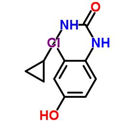 1- (2- 클로로 -4- 하이드 록시 페닐) -3- 사이클로 프로필 우레아