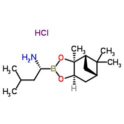 (R)-BoroLeu-(+)-Pinanediol-HCl CAS:779357-85-6