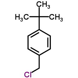 1-tert-butyl-4-(chloromethyl)benzene CAS:19692-45-6