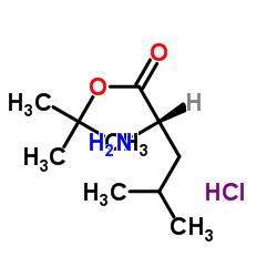 L-Leucine tert-butyl ester hydrochloride CAS:2748-02-9