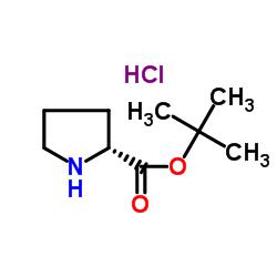 D-Proline tert-Butyl Ester Hydrochloride CAS:184719-80-0