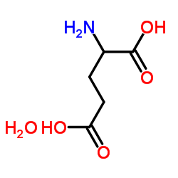 DL-Glutamic acid monohydrate CAS:19285-83-7