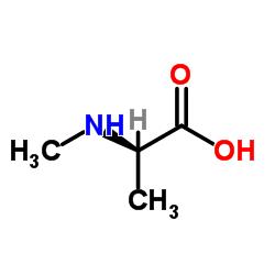 N-Methyl-D-alanine CAS:29475-64-7