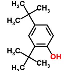 2,4-Di-tert-butylphenol CAS:96-76-4